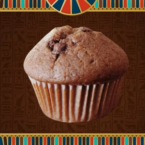 Choc Chip Muffin